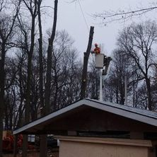 Bucket truck for arborists